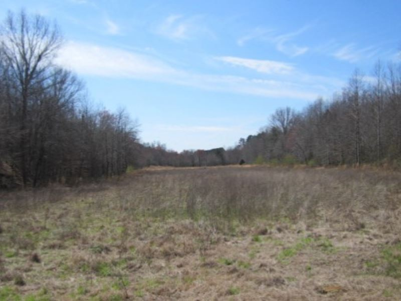 38 7 Acres In Prentiss County Ranch For Sale