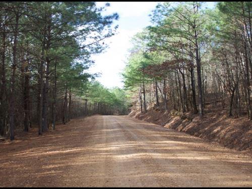80 Acres In Attala County In Kosciu : Kosciusko : Attala County : Mississippi