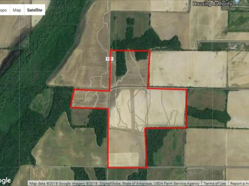 180+/- Acres in Woodruff CO : Cotton Plant : Woodruff County : Arkansas