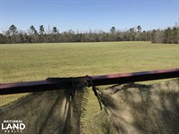 Fitch Rd Rec And Timber Land : Lake City : Williamsburg County : South Carolina