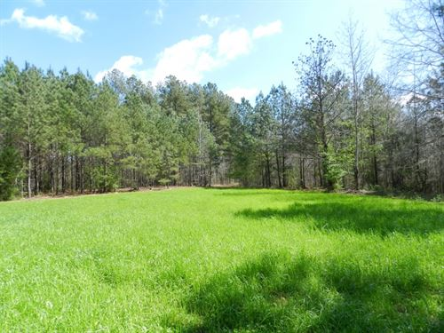 Timber Investment & Hunting : Greenville : Meriwether County : Georgia