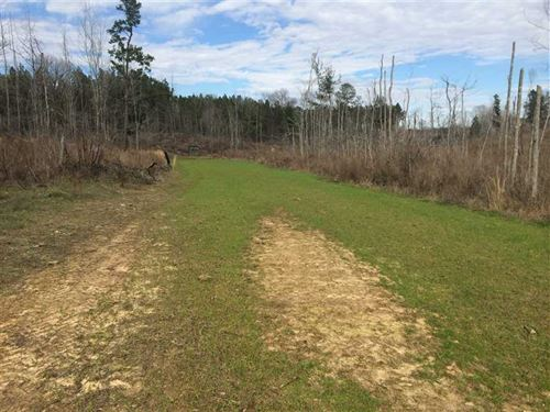 Land For Sale in Carroll County : Carrollton : Carroll County : Mississippi