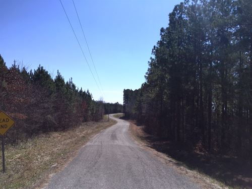Tract 1578 East : Scotts Hill : Henderson County : Tennessee