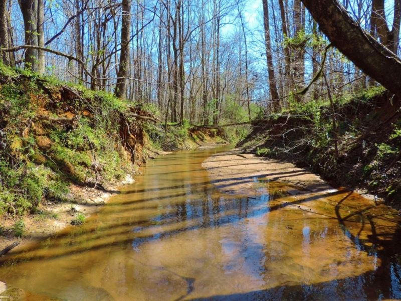 Big Creek Frontage & Hardwood : Greensboro : Greene County : Georgia