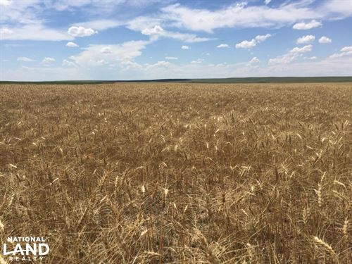 Stratton, Colorado Farm Ground For : Stratton : Kit Carson County : Colorado