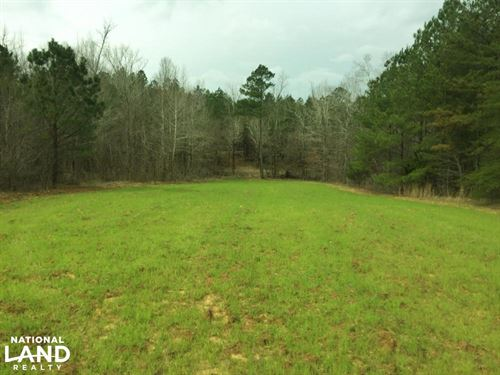 Colbert County Hunting/Timber Inves : Tuscumbia : Colbert County : Alabama