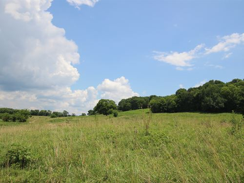 36 Ac Farm Or Residential Land : College Grove : Rutherford County : Tennessee