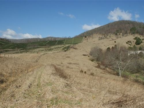 Mini Farm With 43 Acres : Elk Creek : Grayson County : Virginia