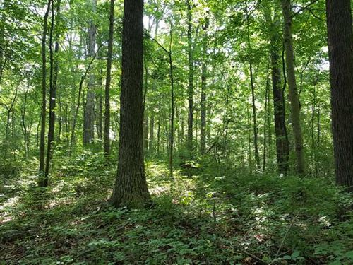 22.5 Acres in Decatur County, IN : Westport : Decatur County : Indiana