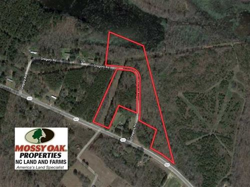 11.4 Acres of Hunting Land With Du : Halifax : North Carolina