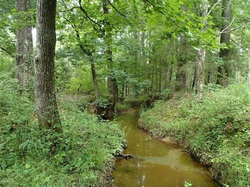 225 Acres In Webster County : Cumberland : Webster County : Mississippi
