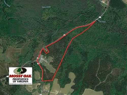 62 Acres of Residential Timber Lan : Emporia : Greensville County : Virginia