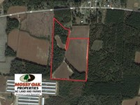 36 Acres of Farm And Timber Land : Orrum : Robeson County : North Carolina