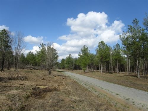 45 Acres In Oktibbeha County On Sou : Starkville : Oktibbeha County : Mississippi