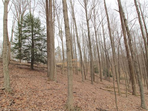 Sullivan Rd - 16 Acres : Sugar Grove : Fairfield County : Ohio