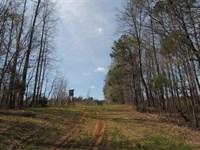 455.43 Ac On Porter Rd. : Shiloh : Harris County : Georgia