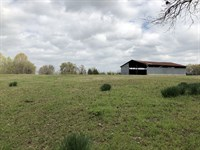 44+ Acres Titus County : Cookville : Titus County : Texas