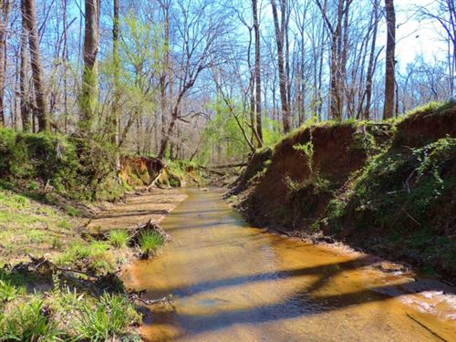 Hardwoods And Creek Frontage : Greensboro : Greene County : Georgia