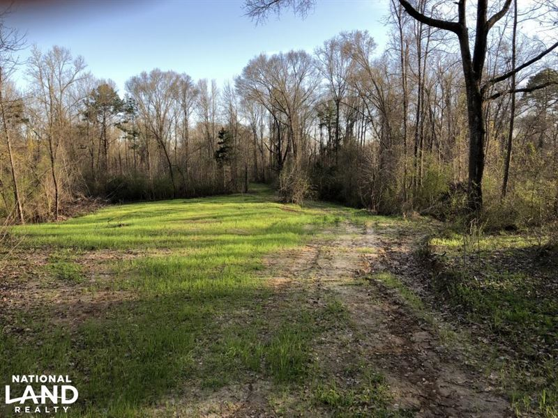 Ball tract ranch for sale natchez adams county for Ranches for sale in mississippi