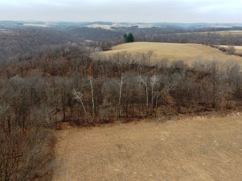 Steuben Hunting Land 60+/- Acres : Steuben : Crawford County : Wisconsin