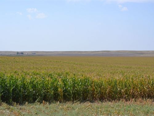Madden Pivot Irrigated, Pasture &Am : Bushnell : Kimball County : Nebraska