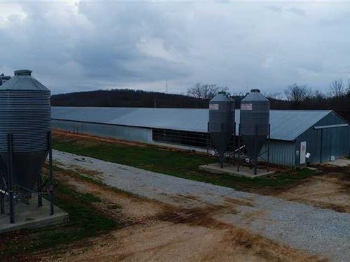 Swain Mountain Broiler Farm : Huntsville : Madison County : Arkansas