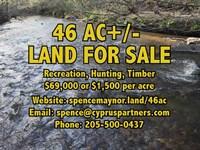 Alabama Woodland At Its Best : Sylacauga : Coosa County : Alabama