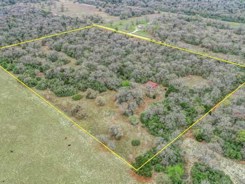 Estate Auction - Milam County Land : Milano : Milam County : Texas