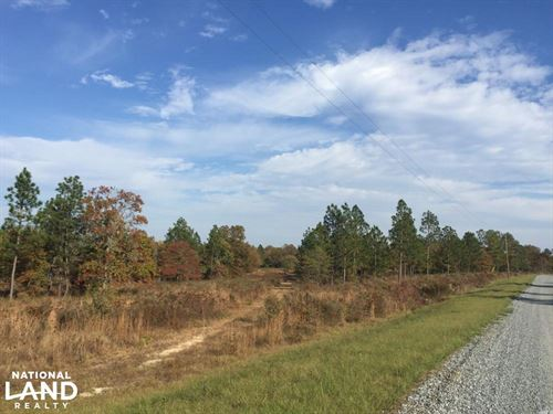 Hound Hollow Streamfront Acreage WI : Camden : Kershaw County : South Carolina