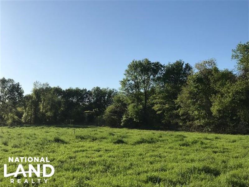 20 Acres Pasture Timber Wildlife Ranch For Sale Eustace Van