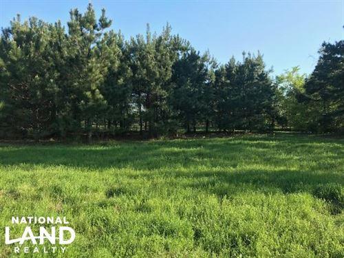 24 Acres, Pasture, Timber, Wildlife : Eustace : Van Zandt County : Texas