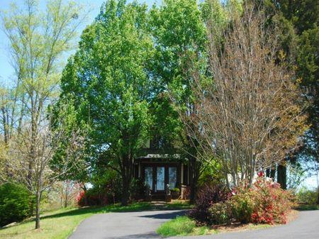 14 Acre Horse Farm : Campobello : Spartanburg County : South Carolina