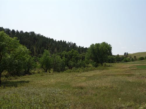 Elk Basin Ranch : Hermosa : Custer County : South Dakota