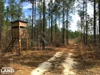 Veterans Rd Hunting And Timberland : Williston : Barnwell County : South Carolina