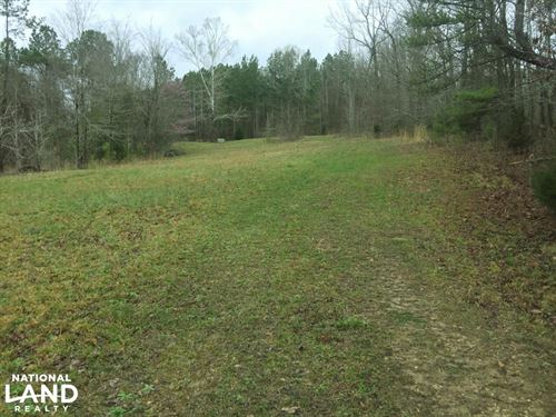 Hwy 247 Hunting Camp OR Homesite : Tuscumbia : Colbert County : Alabama