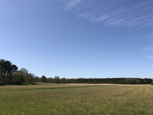 50 +/- Beautiful Acres, Bartow Co. : Taylorsville : Bartow County : Georgia