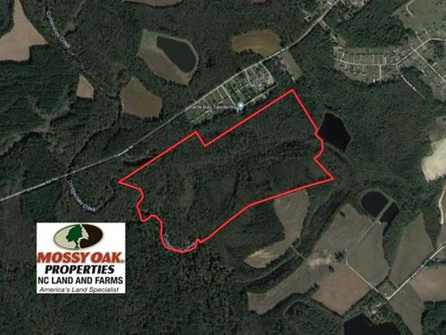 Reduced, 115 Acres of Hunting Lan : Wilson : North Carolina