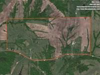 Beautiful 280 Acre Combination Far : Milan : Sullivan County : Missouri