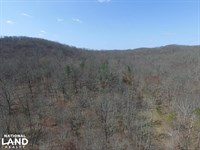 East Tennessee Wooded Hunting & Rec : Rockwood : Roane County : Tennessee
