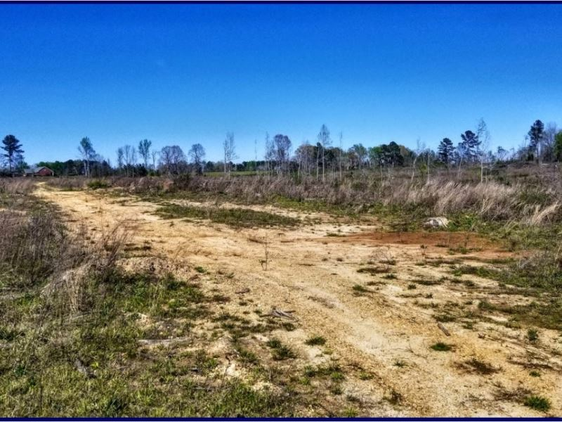 74 Acres In Copiah Lincoln County Ranch For Sale