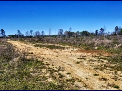 74 Acres In Copiah-Lincoln County : Wesson : Copiah County : Mississippi