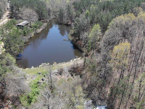 Macks Lakes Tract : Tallapoosa : Haralson County : Georgia