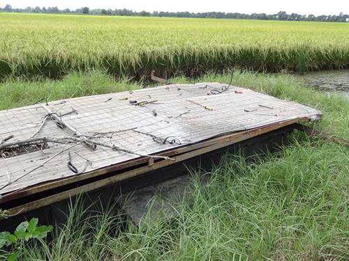 325 Acre Duck & Deer Lease : Coy : Lonoke County : Arkansas