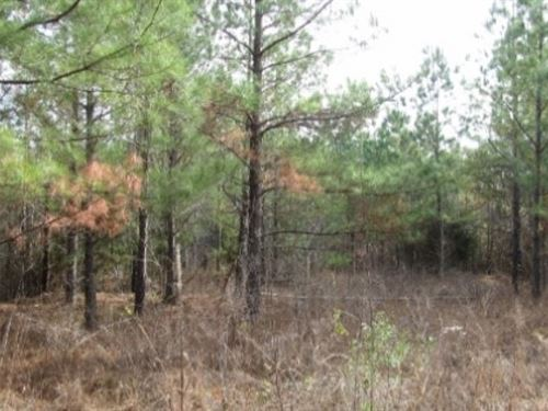 280 Acres In Webster County : Eupora : Webster County : Mississippi