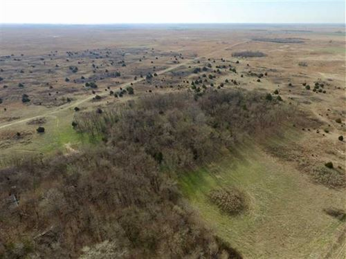 160 Acres of Hunting And Pastur : Hudson : Stafford County : Kansas