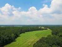 Saline Bluff Ranch : Lockesburg : Sevier County : Arkansas