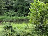 Ozan Creek 453 Acre Hunting Refuge : Ozan : Hempstead County : Arkansas