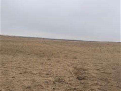 Farm For Sale In Finney County, Ks : Garden City : Finney County : Kansas
