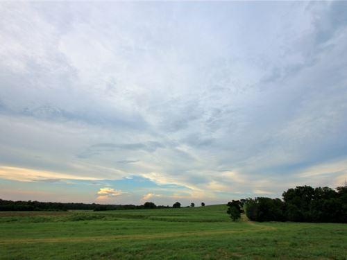 Vista Ranch : Navasota : Grimes County : Texas