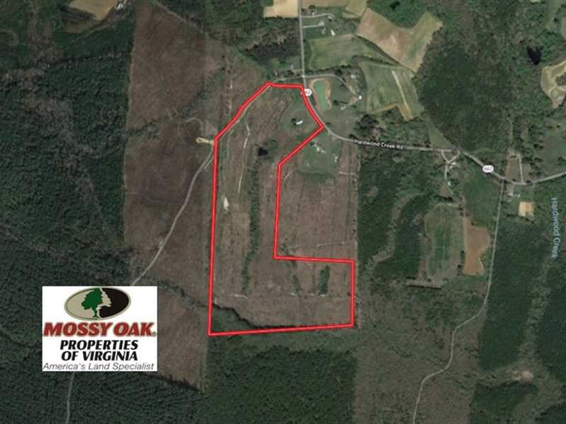 74 Acres of Hunting And Recreation : Stoney Creek : Dinwiddie County : Virginia